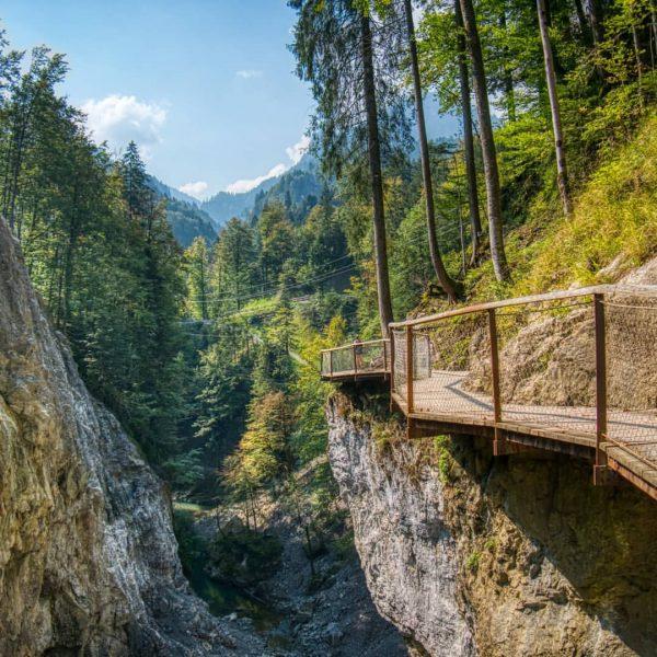 Heute bei bestem Wetter einen Spaziergang durch die Rappenlochschlucht und die Alplochschlucht gemacht👌🏼 ...