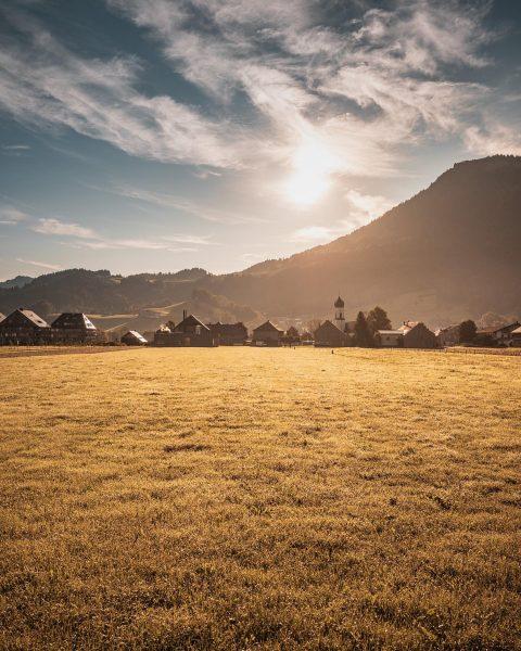 """Unsere """"forest cities"""" vom FAQ Bregenzerwald 2020! Viel Wald, grandiose EinwohnerInnen, großartige Architektur ..."""