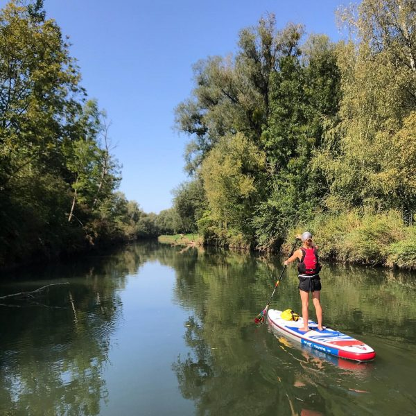 Immer wieder ein Naturgenuss, die SUP Tour am Alten Rhein!! #standuppaddelninvorarlberg #sup #standuppaddling ...