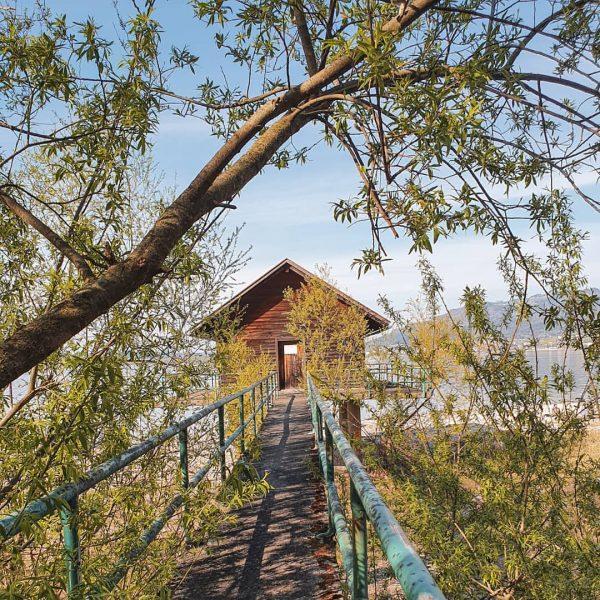 Versteckte, romantische Plätze und Hütten am Mehrerauer Seeufer in Bregenz. Wo sind eure ...