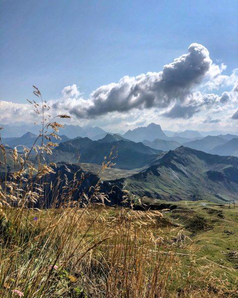 Spätsommer auf dem Diedamskopf Late summer on the Diedamskopf #diedamskopf #schoppernau #bregenzerwald #vorarlberg #vorarlbergwandern #wandernimbregenzerwald #bregenzerwaldliebe #loveaustria...