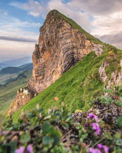 The art of nature⛰️ . . . #geology #bregenzerwald #visitbregenzerwald #vorarlberg #austria #amazingview ...