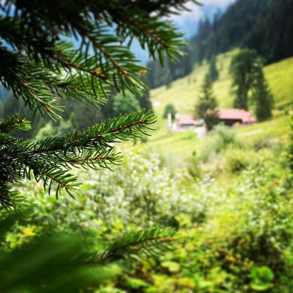 #österreich #kleinwalsertal #bärgunttal #urlaub2020 #holiday #holidays #gooddays #goodtimes #ontheroad #wanderlust Kleinwalsertal.com