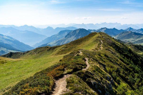 El camino es la meta #vorarlberg #visitvorarlberg #venividivorarlberg #bregenzerwald #alpenvereinvorarlberg #camino #mountaineering #mountains #alps #austria #SonyWorldClub #bealpine...