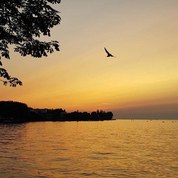Summerdays 🌅 #nofilter #sky #burningsky #bregenz #visitbregenz #bodensee #lakeofconstance #visitvorarlberg #vorarlberg #bodensee #lake #wasser #aussicht #view #sunset...