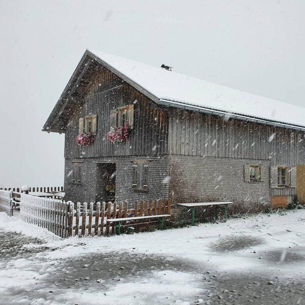...und noch mehr Winter... #bregenzerwald #hochhäderich #ersterschnee