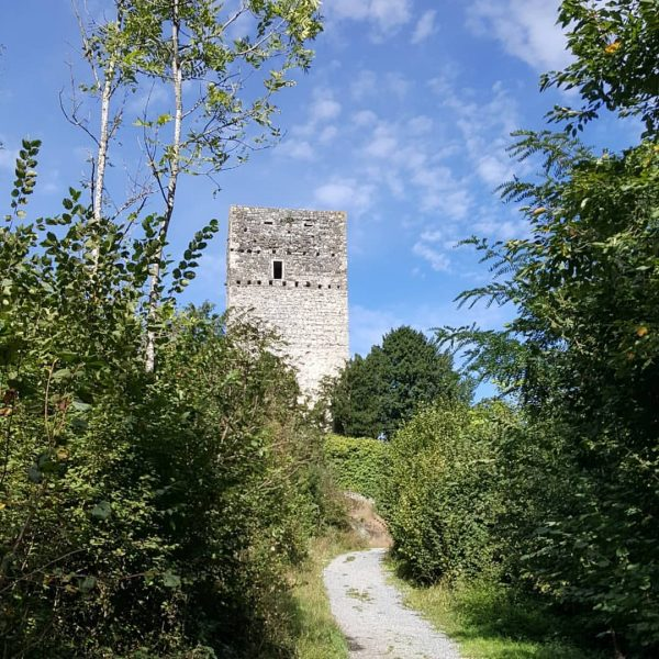 Tostnerburg in Feldkirch Die Tostnerburg wurde um ca. 1290 errichtet und wie die ...