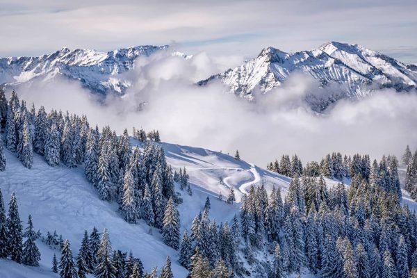First snow ⛄🤩 #visitbregenzerwald #vorarlberg #naturphotography #naturlovers #alpenliebe #amazingview #discoveraustria #landscape #weloveaustria #adventuretime ...