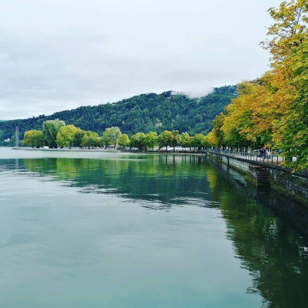 #seeliebe ❤️ #Bodensee#Bodenseevorarlberg#Bodenseeliebe #naturphotographie #naturliebe#natur#amseeentlang#instapic#travelphotography#pic#picoftheday Bregenz