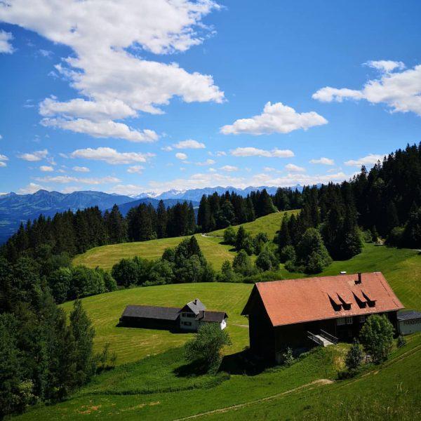 Pfänder, Gasthaus Dohle, Vorarlberg Blick Richtung Bregenzerwald 🍀🌲🌳🏞️ #pfänder #gasthausdohle #bregenz #vorarlberg #westaustria ...