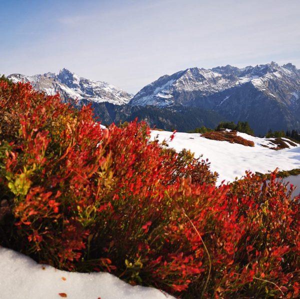 Ich kam. Ich sah. Schnee im Herbst. 🍁❄️ #klostertal #sonnenkopf #herbst #ersterschnee Sonnenkopf ...