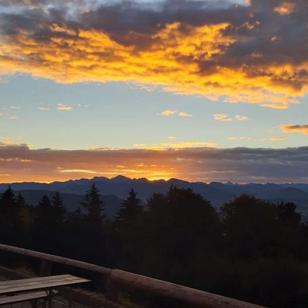 Der Sonnenaufgang von heute braucht keine Worte 😍 #pfänderbahn #pfänder #bergamsee #bodenseee #bergliebe #sunrise