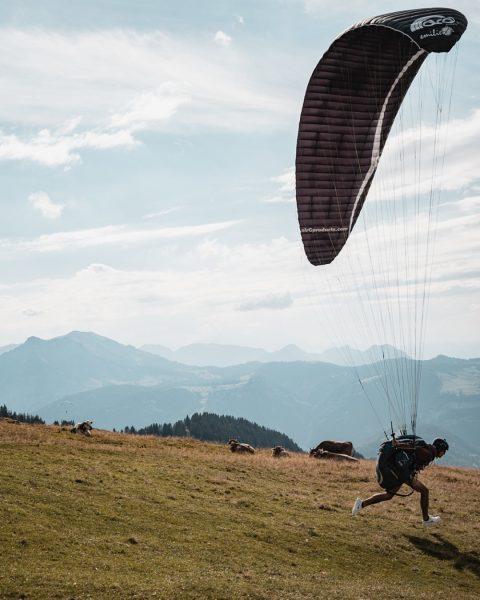 Flying into the new week like ... 🚀 #whatthefaq #faqbregenzerwald #faq #bregenzerwald #friendshipisontheway ...