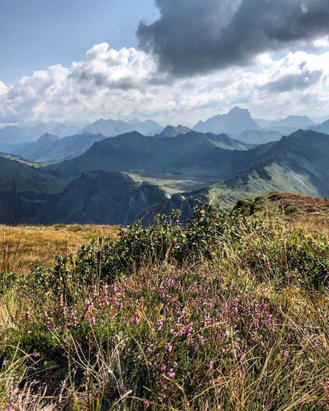 Urlaubserinnerungen: spätsommerliches Alpenpanorama im Bregenzerwald Holiday memories: late summer Alpine panorama in the Bregenzerwald #diedamskopf #schoppernau #bregenzerwald...