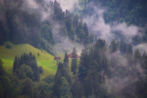 Schröcken shortly after the rain #schröcken #vorarlberg #warthschröcken #visitvorarlberg #feelaustria #mountains #landscape #landschaftsfotografie #arlberg #nebel #mist #bregenzerwald...