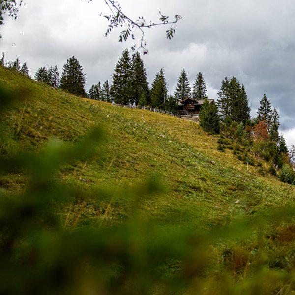 The Golmerhouse . . . . #mountainhouse #alps #bergwelten #moody_nature #letsgosomewhere #landscapephotography #nature ...