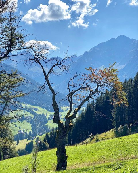 Jetzt kann der Herbst kommen 🍂😎 #AufhebungderReisewarnung#Kleinwalsertal#Berge#Herbst#Alpenpanorama#Alpenliebe#Bergliebe#Wanderliebe#wandern#Wanderlust#UrlaubindenBergen#wandernmachtglücklich#Aktivurlaub#Herbsturlaub Kleinwalsertal Österreich