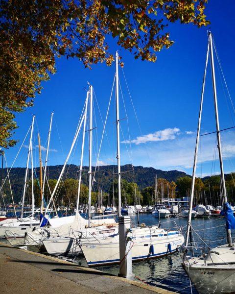 It's nice to live in Bregenz. #bregenz #vorarlberg #westaustria #visitbregenz #visitvorarlberg #boat #bodensee ...