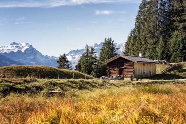 Mit den meisten Sonnenstunden im Montafon ist der Bartholomäberg - auch als Montafoner Sonnenbalkon bekannt - der...