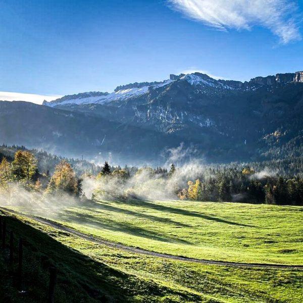herbstliebe 💛 🍂 #meinsibratsgfäll #sibratsgfäll #visitvorarlberg #visitbregenzerwald #visitaustria #bregenzerwald #vorarlberg #outdoor #nature #autumn ...