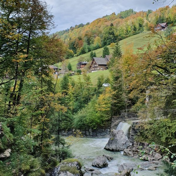 Beautiful gorge Rappenlochschlucht near Dornbirn, Austria Люблю, когда за прекрасными видами не нужно ...