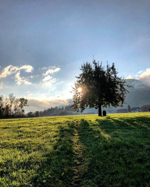 Von wegen MORGEN:grauen... was für ein erhabener Moment, wenn die Sonne über den ...