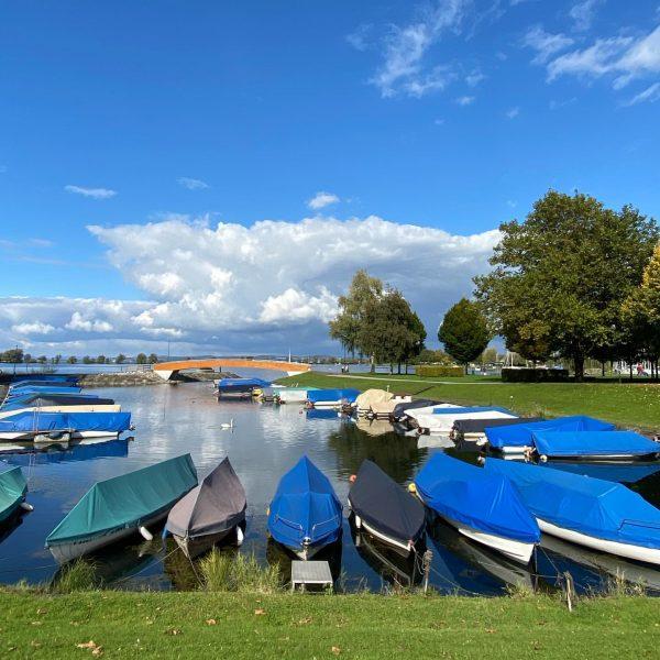 Sunday walks at the lake @bodenseevorarlberg #visitvorarlberg #myvorarlberg #autumn