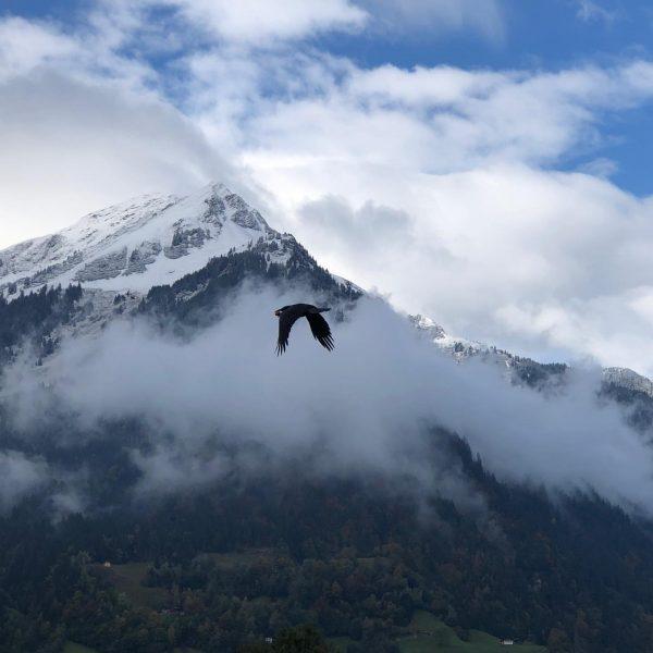 Maandagmorgen😊#meinmontafon Sankt Gallenkirch, Vorarlberg, Austria