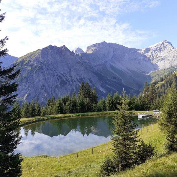 #brandnertal #vorarlberg #visitvorarlberg #venividivorarlberg #österreich #scenicaustria #austria #visitaustria #alpen #alpenblick #alpenliebe #alps #berge ...