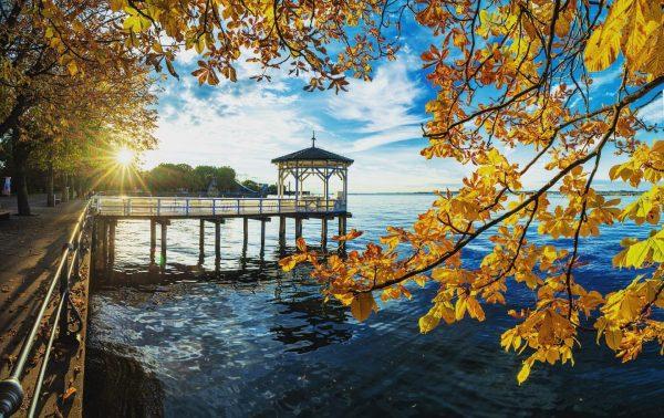 Love that autumn yellow #visitbregenz #visitvorarlberg #venividivorarlberg #bregenz #bodensee #fischerstegbregenz #autumn #yellow #lakeofconstance