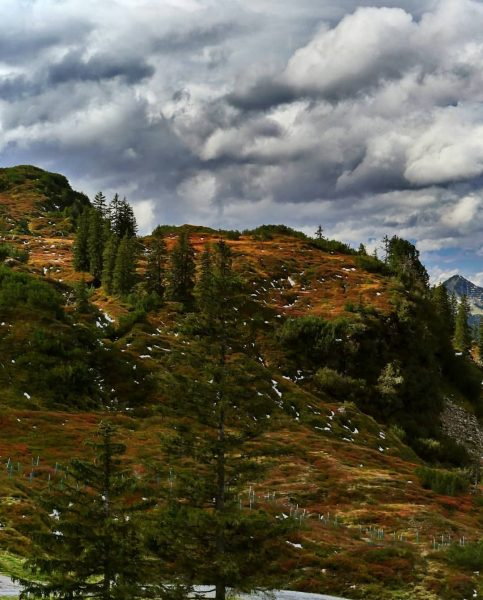 #vorarlberg #österreich🇦🇹 #alpen im #herbst Sonnenkopf - Familienskigebiet & Bärenland