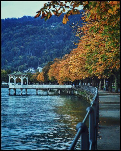 🍂🍁 . . . #bregenz #visitbregenz #vorarlberg #visitvorarlberg #bodensee #bodenseevorarlberg #visitbodensee #autumntime #autumnvibes #autumn Bregenz