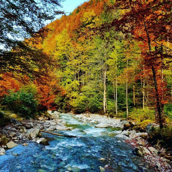 #wanderlust #wandern #meintraumtag #naturephotography #natur #visitvorarlberg #venividivorarlberg #meinvorarlberg #bergwelten #bergliebe #alpenverein #alpenliebe #alpenliebe_official ...