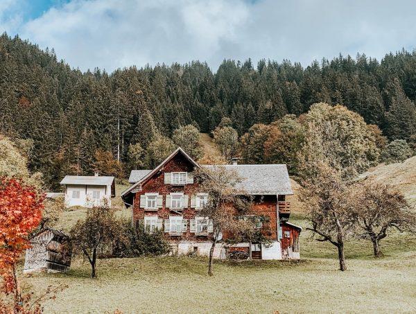 🍂 - - #ebnit #austria #vorarlberg #mountains #alpine #nature #naturelover #green #forest #travel ...