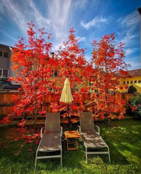 Autumn, the season that teaches us, that change can be beautiful. 🍂 #autumn ...