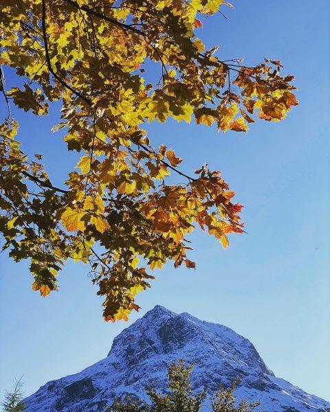 Herbst in Lech🍂 Das Omeshorn ist schon angezuckert und die Bäume leuchten in bunten Farben. #auroralech #bergefürdieseele...