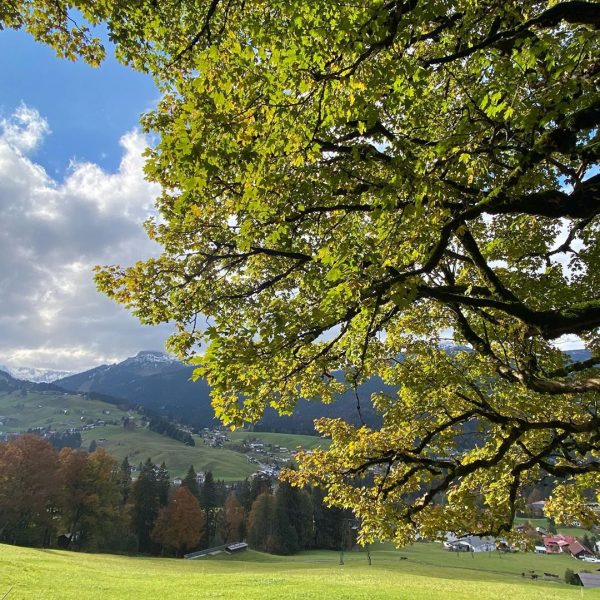 Vom Herbst, in den Winter/Riezlern🍂🍂#herbst #mountain #berge #outdoor #kleinwalsertal #wandern #wanderlust #outdoor #nature #naturephotography
