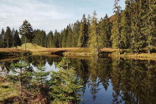 #schwarzlache #wandern #hiking #lecknertal #hittisau #bregenzerwald #vorarlberg #bergfinkontour Lecknertal
