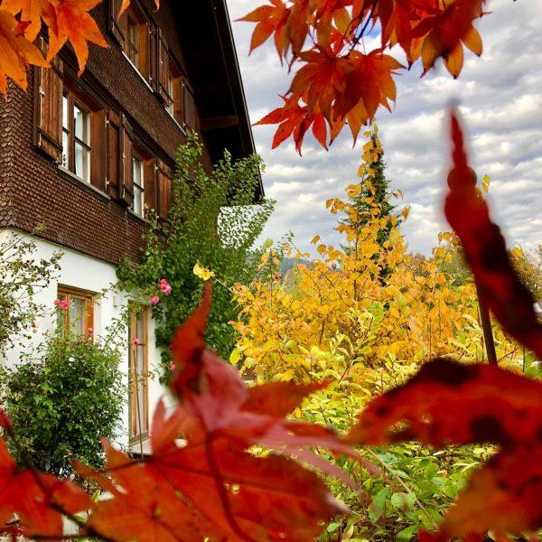 Der Herbst ist da! 🍁 Schwarzenberg im Bregenzerwald