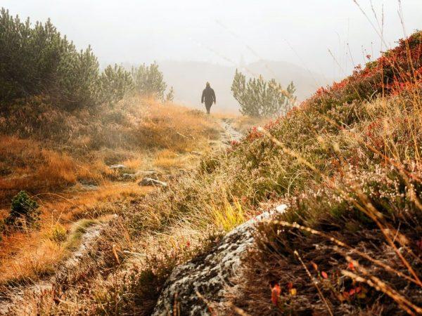 ...diese Landschaft! 🥰🍂 Nun hat der Herbst auch im Euorpaschutzgebiet Verwall seine Spuren ...