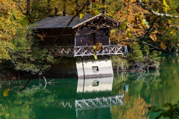 Herbstliche Schluchtenwanderung 🌰🍁🍂🌰🍁🍂🌰🍁🍂🌰🍁🍂🌰🍁🍂 #wandern #rappenlochschlucht #alplochschlucht #staufensee #goldenerherbst #indiansummer #karrendornbirn #karrenseilbahndornbirn #karrenseilbahn #karrenseilbahn❤️ ...