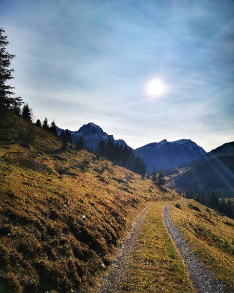 #autumndays @lechzuers #mylechzuers #meinvorarlberg #omeshorn #visitaustria #visitvorarlberg #venividivorarlberg #loves_austria #feelaustria #discoveraustria #soulful_moments #simplyaustria #allbeauty_addiction #photografia_naturamember #picturetokeep_nature #ig_austria...