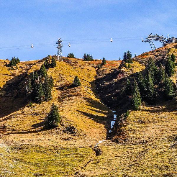 Herbstliche Wanderung von der #kanzelwand nach #riezlern. 🍁🍂 #Kleinwalsertal #dieschönstesackgassederwelt #dieschoenstesackgassederwelt #austria #holiday #vorarlberg #aut #hike #mountains...