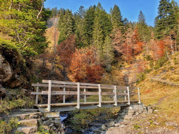 Herbstliche Wanderung auf den Hohen Freschen! Sogar Steinböcke haben wir zu Gesicht bekommen! ...