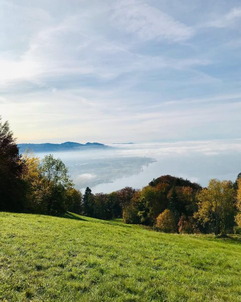Herbsttage am Pfänder... Gestern haben wir noch bei traumhaftem Sonnenschein eine Wanderung am ...