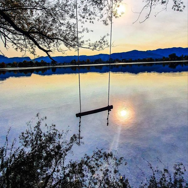 Bad #ideas make the #best #memories 🤣 #bodenseeufer #vorarlberg #bodensee #lakeconstance #nature #naturfotografie ...