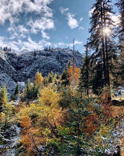 Autumn meets winter in @lechzuers 🗻🍂😍 Photo: @lechzuers #bestofthealps #mylechzuers #alps #feelthealps #fantasticalps ...