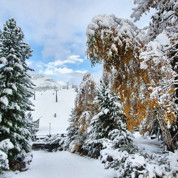 Winterwonderland is back! 🥰 . . #cantwait2ski #winter #winteriscoming #snow #nosnownoshow #silence #keepcalmandprayforsnow ...
