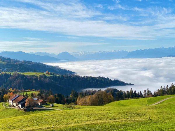 ... über den Wolken 💚 #innauerhof #biobauernhof #ökologisch #bodensee #wolken #clouds #abovetheclouds #wolkendecke #lebenwoandereurlaubmachen #urlaubambauernhof #venividivorarlberg #landwirtschaft...
