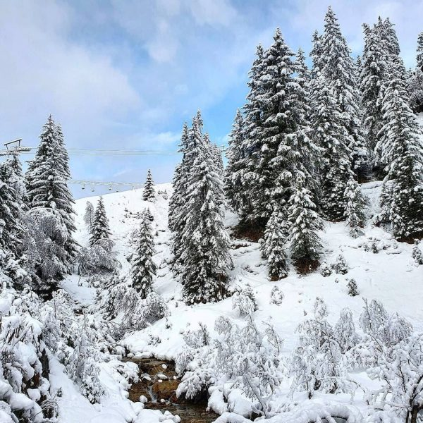 Meanwhile in Lech Zürs am Arlberg ❄️ #winteriscoming #lechzuers #visitvorarlberg 📸 (c) @lechzuers ...